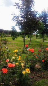 """O vizita la """"Gradina Botanica"""" Bucov"""